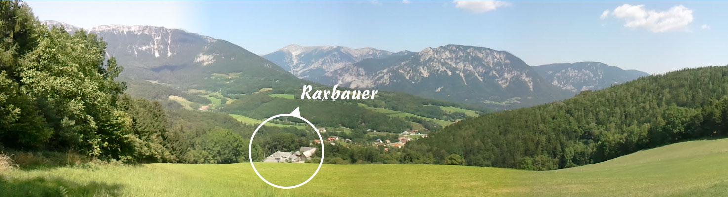 Raxbauer